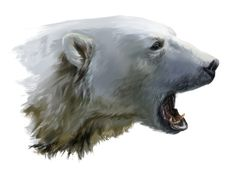 A polar bear growls by Kajenna on DeviantArt Polar Bear Paint, Polar Bear Drawing, Polar Bear Tattoo, We Bare Bears Wallpapers, Bear Tattoos, His Dark Materials, Bear Wallpaper, Art Sculpture, Art Carved