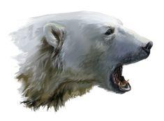 A polar bear growls by Kajenna on DeviantArt Polar Bear Paint, Polar Bear Drawing, Polar Bear Tattoo, Wildlife Paintings, Wildlife Art, We Bare Bears Wallpapers, Bear Tattoos, Bear Wallpaper, Art Sculpture