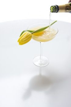 Spring harvest party - Cocktail.