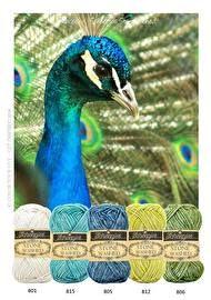Kleurpakket Stonewashed Peacock