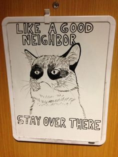 Grumpy Cat is your Spirit Animal / 19 Reasons Socializing Is Not For You (via BuzzFeed)