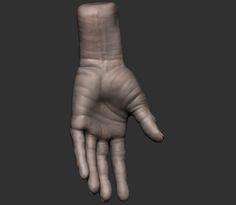 ArtStation - Hand_Anatomy, Eder de Souza