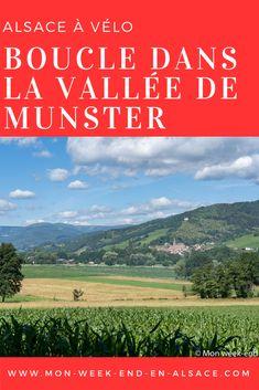 Les 10 Meilleures Images De Alsace Vallee De Munster En 2020 Alsace Munster Vallee