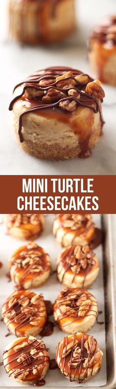 Mini Turtle Cheesecakes Recipe These lasted 2 MINUTES! Everyone loved them. Mini Turtle Cheesecakes feature a thick graham cracker crust, vanilla cheesecake filling, and are topped with caramel, toasted pecans, and chocolate! Mini Desserts, No Bake Desserts, Just Desserts, Christmas Desserts, Delicious Desserts, Dessert Recipes, Yummy Food, Dessert Ideas, Dessert Shots