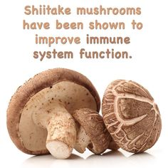 One study done on mice also found mushrooms to enhance immune response to salmonella.