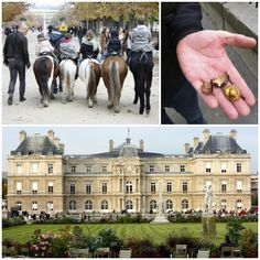 Jardin du Luxembourg - snacking on freshly roasted chestnuts you bought from a street vendor.
