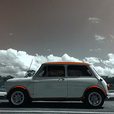 Very nice mini owned by @sweetpea_dolly #minisofinstagram