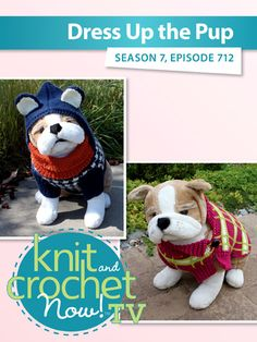 Knit and Crochet Now! Season Dress Up The Pup Knit And Crochet Now, Plaid Crochet, Crochet Dog Sweater, Crocodile Stitch, Hounds Tooth, Bead Kits, Dog Hoodie, Hound Dog, Season 7