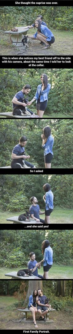 cute-puppy-ring-couple-proposal-bench