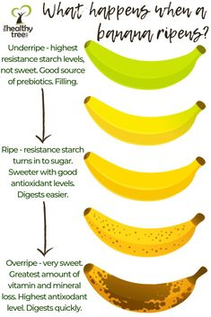 Bananas are a fantastic superfood but do you know what ripeness of banana you should be eating to reap all the health benefits they offer? Banana Fruit Benefits, Health Benefits Of Bananas, Holistic Nutrition, Nutrition Tips, Health And Nutrition, Health And Wellness, Interesting Health Facts, Recipes, Loosing Weight