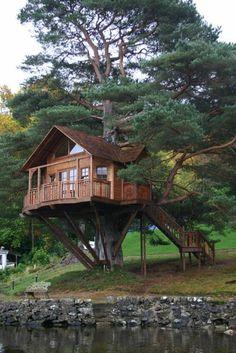 fantastisches Haus am Baum