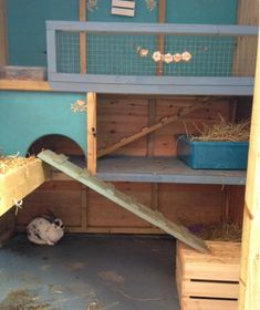 All sorts of rabbit housing idea for you to view. Great ideas, lots of fun and ways to make your bunnies& housing an attractive feature in the garden& as well as a fantastic environment for. Bunny Sheds, Rabbit Shed, Rabbit Hutch Plans, Outdoor Rabbit Hutch, Rabbit Run, Rabbit Hutches, Bunny Cages, Rabbit Cages, Fluffy Animals