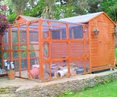 All sorts of rabbit housing idea for you to view. Great ideas, lots of fun and ways to make your bunnies' housing an attractive feature in the garden/home as well as a fantastic environment for. Guinea Pig Toys, Guinea Pig Care, Guinea Pigs, Reptile Cage, Reptile Enclosure, Diy Bunny Hutch, Small Horse Barns, Rabbit Hutches, Vivarium