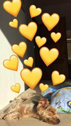 50 IDEAS PARA FOTOS EN SNAPCHAT ORIGINALES - Fire Away Paris Simpson Wallpaper Iphone, Emoji Wallpaper, Wallpaper Iphone Cute, Cute Wallpapers, Instagram Snap, Instagram And Snapchat, Emoji Pictures, Cute Pictures, Snapchat Streak