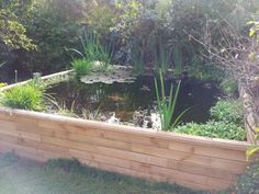 Gallery For Raised Backyard Ponds