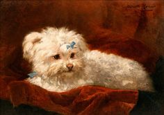Here we have a painting of Love....I think it was his mommy who painted her Maltese who looks sooo cute and spoiled with his little bow on his velvet pillow....The painting is from the 19th century, I found it in a Gallery :-)
