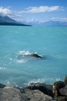 Turquoise Sea, South Island, New Zealand