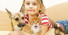 Selon une récente étude Ifop publiée dans le cadre du programme Purina In Society,les Français entretiennent bel et bien un lien particulier avec leurs petits compagnons. Ils sont en effet majoritairement d'accord pour dire qu'être en présence d'un chien ou d'un chat a une influence positive sur leur quotidien…