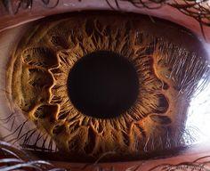 human-eyes-close-up