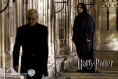 Severus Snape - severus-snape Photo