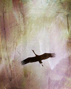 Soul Flying by Melissa Smith.  #UrbanArtDistrict
