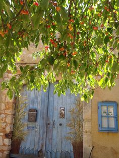 Roussillon. Le temps des cerises