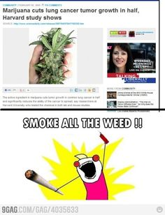 Smoke all the weed!