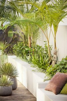 garden sun area - Google Search (garden beds along fence)
