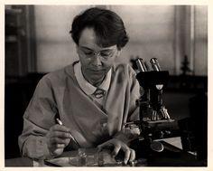 Barbara McClintock 1902-1992