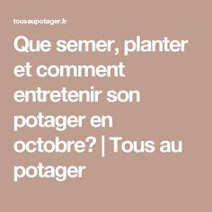 Que semer, planter et comment entretenir son potager en octobre? | Tous au potager