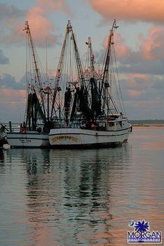 Shrimp Boat, Speed Boats, Tall Ships, Fishing Boats, Sailing Ships, Sail Boats, Boats, Fast Boats, Runabout Boat