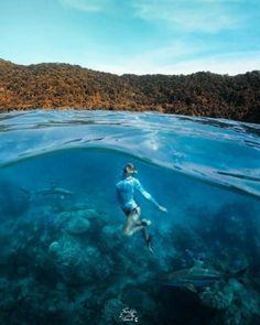 Travel in thailland Voyager en thailland Profitez de sur Airbnb gratuit (lien sur le profil) Gopro Underwater, Underwater Images, Underwater World, Underwater Photography, Travel Photography, Amazing Photography, Bangkok, Black Tip Shark, Statues