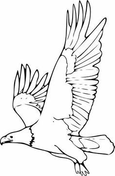 Cool Eagle Coloring Book 30 Eagle Outline Map Art