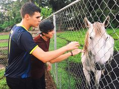 Cnco Cute Pictures, All About Time, Reyes, Wallpapers, Animals, Couples, Instagram, Singers, Amor