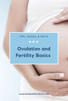 Ovulation and Fertil