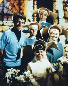 The Flying Nun is an American sitcom produced by Screen Gems for ABC based on the 1965 book The Fifteenth Pelican, by Tere Rios, which starred Sally Field as Sister Bertrille. 1967-1970  Alejandro Rey  Marge Redmond  Shelley Morrison  Madeleine Sherwood