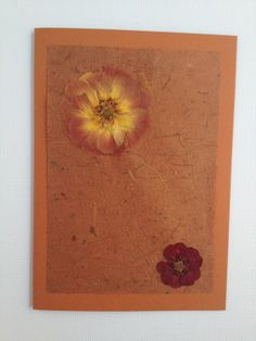 Handmade Any Occasion Card - Pressed Orange Flowers £4.00