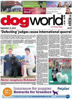 This week's Dog World #newspaper #dogs #dogshows #dogshowing #September16 #2016 #showdog