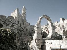 Jerusalem Photos > Region > Old City  Old City, The Tower of David