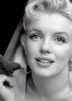 Marilyn Monroe - Seguros de Salud y Dentales - Más información contacta con santiagolopezsanti@ outlook.es
