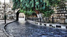 الطريق الخلفي لقلعة دمشق - The back road of Damascus castle by Samer Abdulaal on 500px