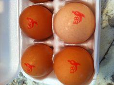 Bad eggs. #nopink4brinker