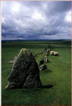 Merrivale stone row, Devon. Ok, its technically not a circle ..