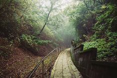 Budapest Hungary, Homeland, Wonderful Places, Railroad Tracks, Places To See, Arch, Country Roads, Camping, Travel Inspiration