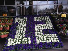 Our local grocery store is in the spirit -  Go Hawks