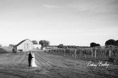 Northern Virginia Winery Vineyard Weddings  Northern Virginia Winery Vineyard Weddings | Winery Wedding Venues Virginia | Wedding Photographer Rodney Bailey | Wedding Ceremony Reception Locations in Northern VA | Rodney Bailey Wedding Photography