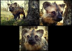 -SOLD- HAND MADE Poseable Hyena Pup! by Wood-Splitter-Lee on deviantART