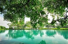 keindahan objek wisata di Danau Linting. Tourism, Water, Outdoor Decor, Indonesia, Home Decor, Traveling, Water Water, Homemade Home Decor, Viajes