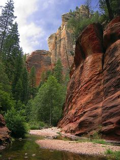 Coconino National Forest (Arizona)