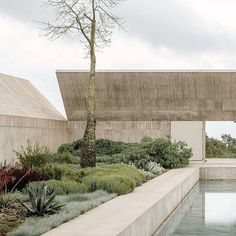 "Villa Alem photographed by Paulo Catrica for @wsjmag. | ""In Portugal's Alentejo region, Swiss architect Valerio Olgiati has designed a massive, avant-garde concrete structure—a personal retreat that gestures to the heavens. A long, narrow pool, constructed from giant slabs of Portuguese marble, divides Villa Além's garden of succulents, figs and pomegranates."""